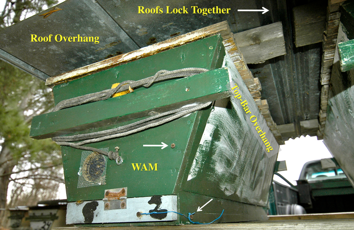 the back of a screen floor hive showing the door to the stick board