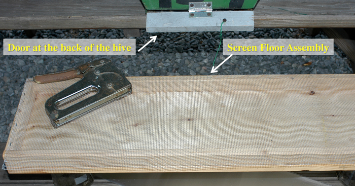 a screen floor assembled and the door at the back of the hive