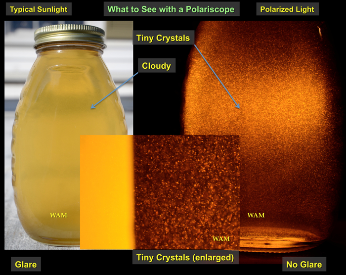 fine crystals in the honey