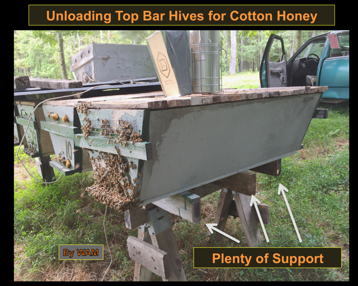 top bar hive for cotton honey production