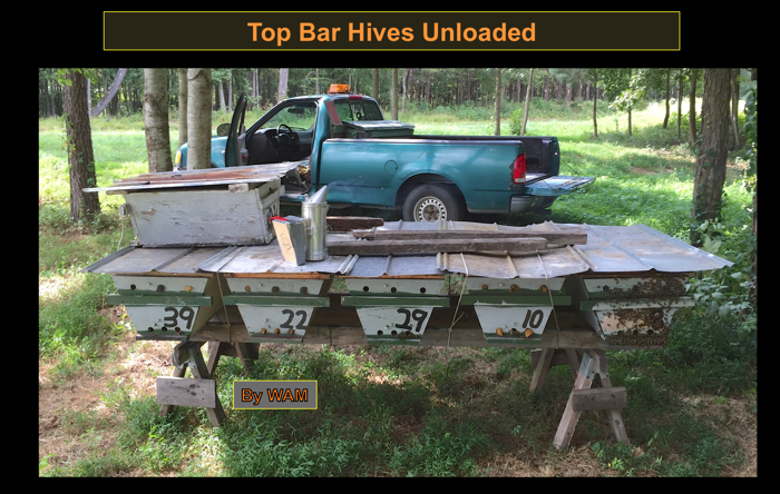 top bar hives for cotton honey production