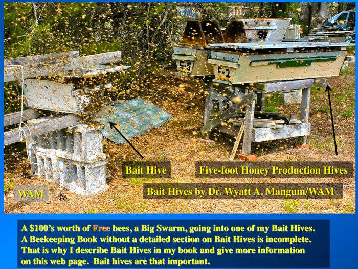 Top Bar Swarm Bait Hives Getting Free Bees 200 Top Bar Hives